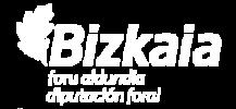 8. Logo DFB